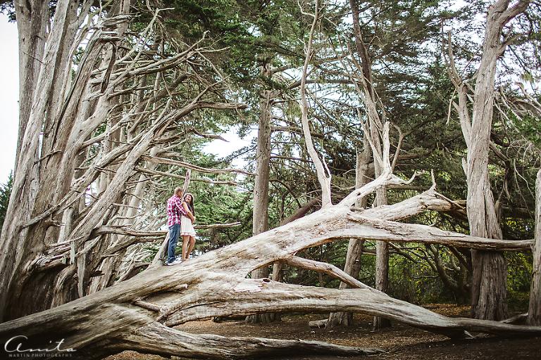 Mossbeach Engagement Photographer 001